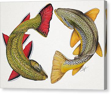 Circling Brook And Brown Trout Canvas Print by Nick Laferriere