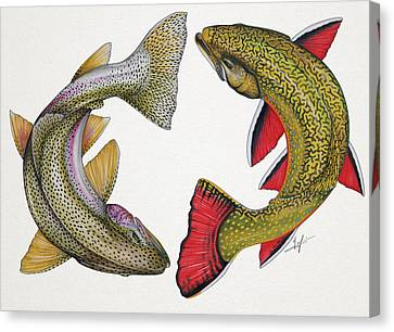 Circling Rainbow And Brook Trout Canvas Print by Nick Laferriere