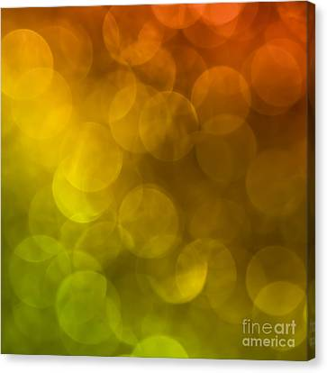 Canvas Print featuring the photograph Citrus 2 by Jan Bickerton