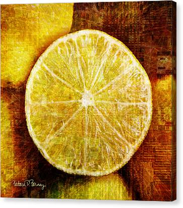 Citrus Canvas Print by Barbara Berney