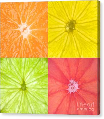Sour Canvas Print - Citrus Fruits by Richard Thomas