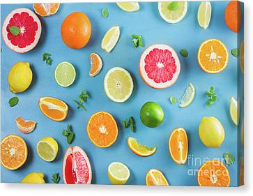 Citrus Summer Canvas Print by Anastasy Yarmolovich