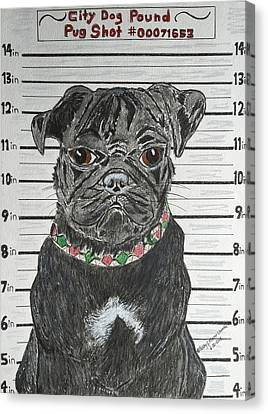 City Dog Pound Pug Shot Canvas Print by Kathy Marrs Chandler