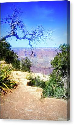 City Flare Grand Canyon 2 Canvas Print