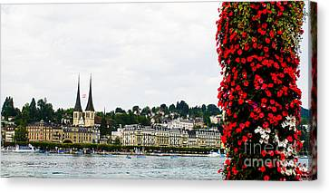 Lucerne Flowers Canvas Print by Anna Serebryanik