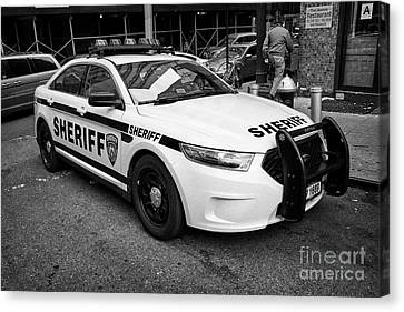 city of new york sheriff department ford police interceptor cruiser vehicle New York City USA Canvas Print