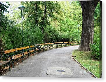 City Park, Vienna Canvas Print by Christian Slanec