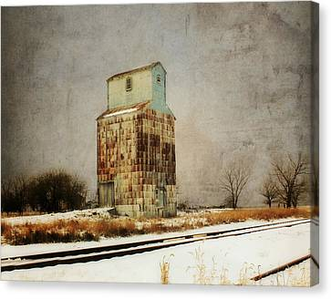 Clare Elevator Canvas Print by Julie Hamilton