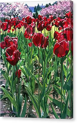 Claret Tulips  Canvas Print