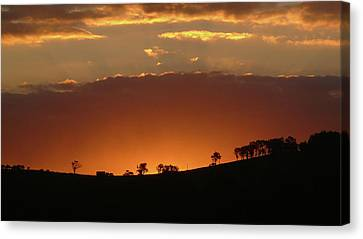 Clarkes Road II Canvas Print by Evelyn Tambour