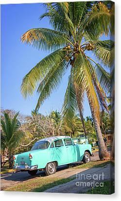 Classic Car In Playa Larga Canvas Print