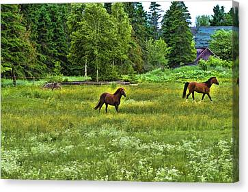 Canvas Print featuring the photograph Classic Country by Gary Smith