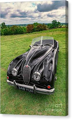 Classic Jag Canvas Print by Adrian Evans