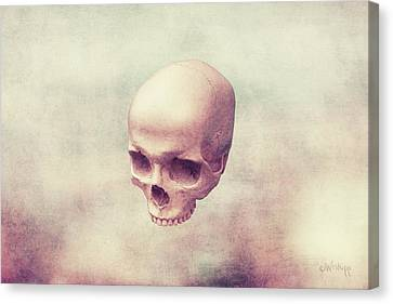 Bones Canvas Print - Classical Levity by Joseph Westrupp