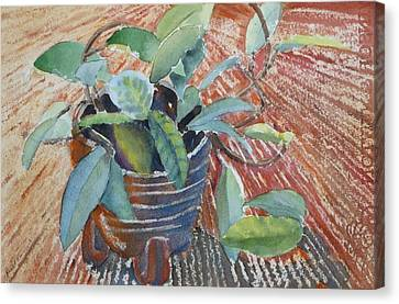 Clay Pot Canvas Print by Ruth Kamenev