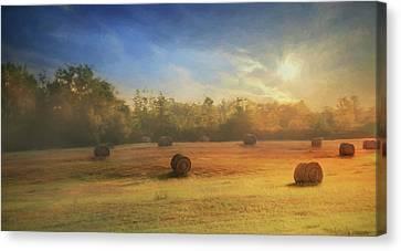 Clayton Morning Mist Canvas Print by Lori Deiter