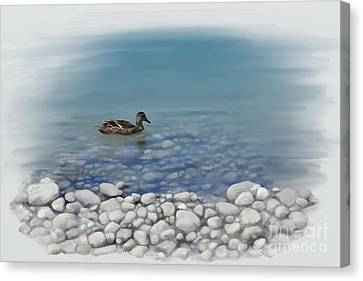 Clear Water  Canvas Print by Ivana Westin