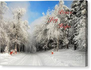 Clearing Skies Christmas Card Canvas Print by Lois Bryan