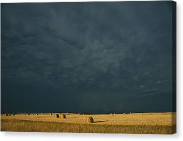 Clearing Storm In Western North Dakota Canvas Print by Michael S. Lewis