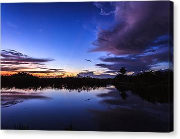 Clearing Storm Over The Anhinga Trail Canvas Print by Jonathan Gewirtz
