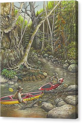 Boundary Waters Canvas Print - Clearing The Creek by Carol Bonick