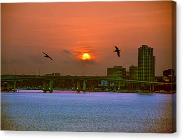 Clearwater At Sunrise Canvas Print by Bill Cannon
