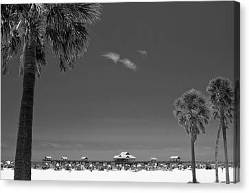 Clearwater Beach Bw Canvas Print by Adam Romanowicz