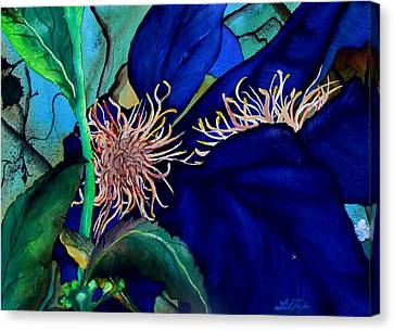 Clematis Regal In Purple And Blue Sold Canvas Print by Lil Taylor