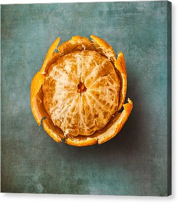 Clementine Canvas Print by Scott Norris