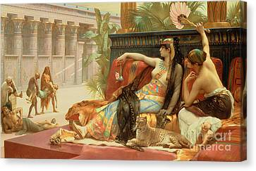 Cheetah Canvas Print - Cleopatra Testing Poisons On Those Condemned To Death by Alexandre Cabanel