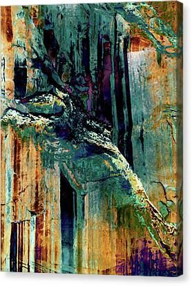 Cliff 2 Canvas Print by David Hansen