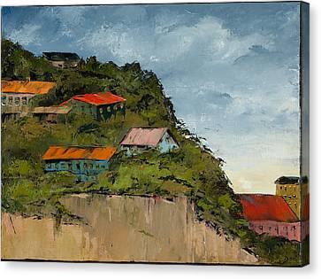 Cliff Homes Canvas Print by Carolyn Doe