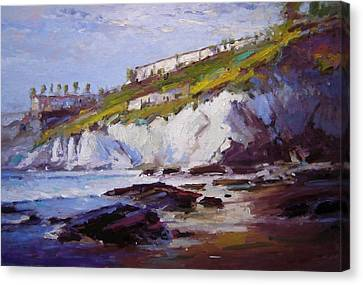 Cliffs At Pismo Beach Xx Canvas Print by R W Goetting