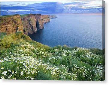 Co. Clare Canvas Print - Cliffs Of Moher, Co Clare, Ireland by Gareth McCormack