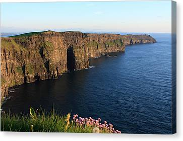 Cliffs Of Moher In Evening Light Canvas Print by Aidan Moran