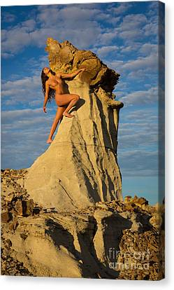 Nature Study Canvas Print - Climbing by Inge Johnsson