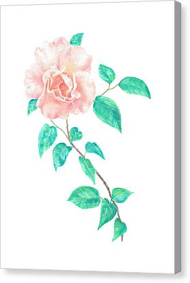 Canvas Print featuring the painting Climbing Rose by Elizabeth Lock