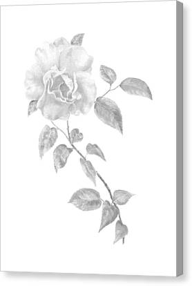 Canvas Print featuring the painting Climbing Rose II by Elizabeth Lock