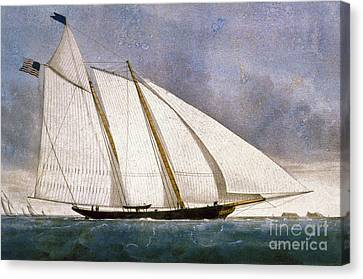 Clipper Yacht America Canvas Print by Granger