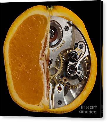 Canvas Print featuring the photograph Clockwork Orange by Brian Roscorla