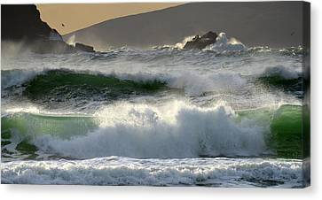 Clogher Beach In Kerry Canvas Print by Barbara Walsh