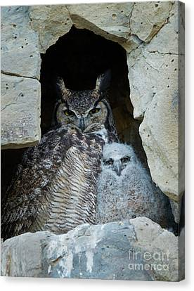 Close To Mom Canvas Print by Mike Dawson