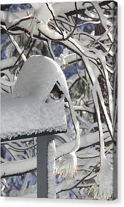 Closed Due To Snow Canvas Print by Diane Zucker