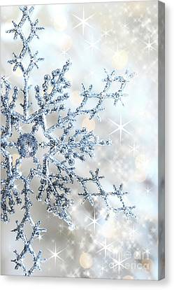 Closeup Of Snowflake Canvas Print by Sandra Cunningham