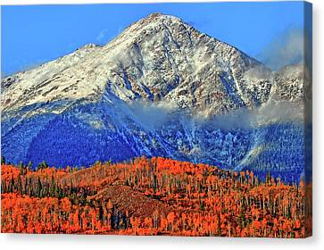 Canvas Print featuring the photograph Closing In On Fall by Scott Mahon