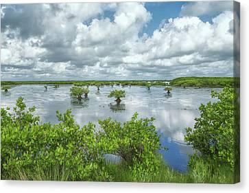 Wetland Canvas Print - Cloud Covered Wetlands by John M Bailey