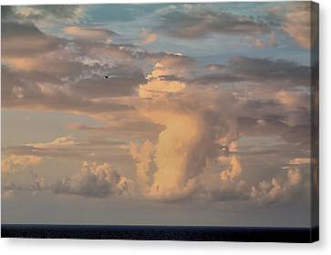 Cloud Dance Canvas Print by Theresa Campbell