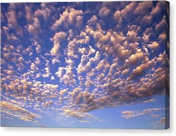 Cloud Expression 1 Canvas Print