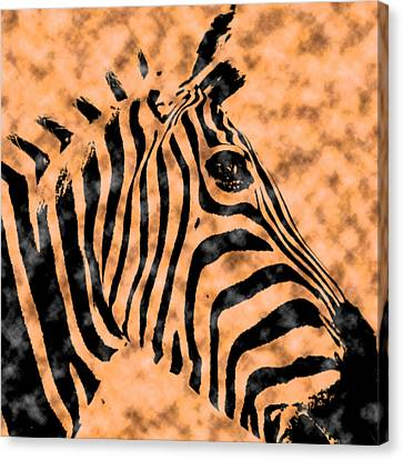 Canvas Print featuring the digital art Cloud Face Zebra by Bartz Johnson