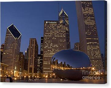 Cloud Gate At Night Canvas Print by Timothy Johnson
